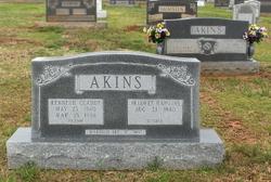 Kenneth Claude PaPaw Akins