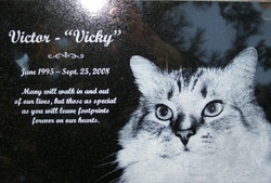 Victor Kitty-Cat <i>Vicky Boy</i> Gillespie