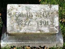 Merinus Nelisse