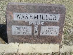 Harry H Wasemiller
