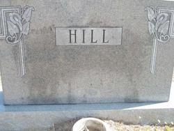 David E. Ike Hill