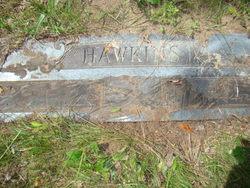 Grace C <i>Reese</i> Hawkins