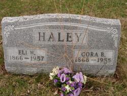 Eli Weldon Haley