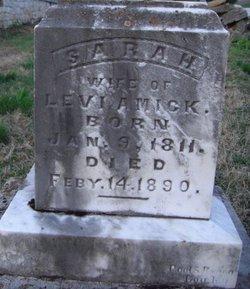 Sarah Sally <i>Overman</i> Amick