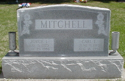 Joyce I <i>Waters</i> Mitchell