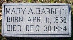 Mary Ann Elizabeth Barrett