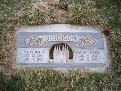 William Andrew Johnson