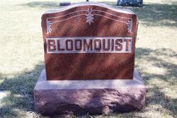 Viola L. <i>Bloomquist</i> Smithart