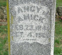 Nancy Jane <i>Cortner</i> Amick