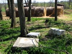 Adams-Lear Cemetery