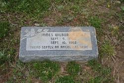 James Wilbur Butler