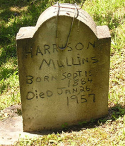 Harrison Mullins