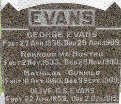 Ronnoug Hans Evans