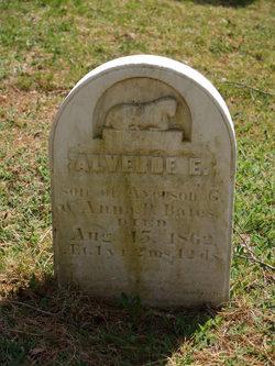 Alverde Ellsworth Bates