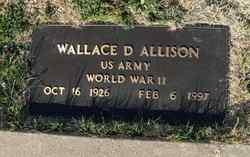 Wallace Delman Allison