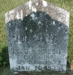 Normal G. Collins
