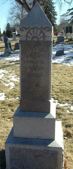 Elza Roy Brigham