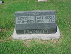 Artimecia Adkins