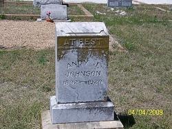 Andrew Jackson Andy Johnson, Sr