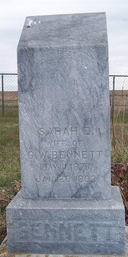Sarah E Bennett