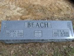 Ivy Alexander Beach