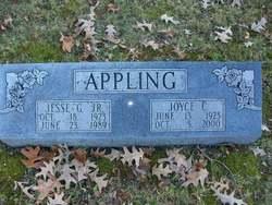 Jesse G Appling, Jr