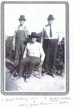 Andrew Jackson Reece