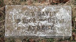 G W Davis
