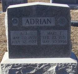 Andrew Jackson Adrian