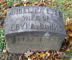 Angelina <i>Luce</i> Banks