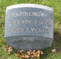 Alex Collingwood