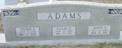 Palmer H. Adams