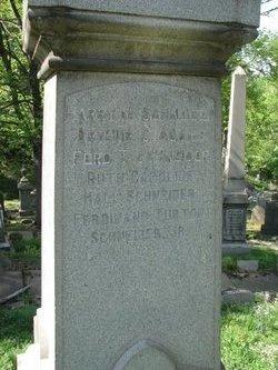 Dr Arthur Clarke Adams