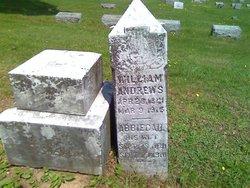Abbiegail <i>Hauldenman</i> Andrews