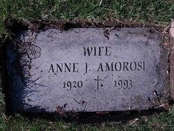 Anna J <i>Sworen</i> Amorosi