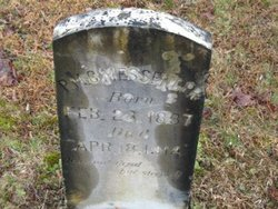 Pulaski McClure Messenger
