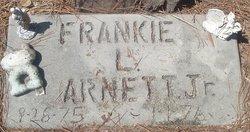 Frankie L Arnett, Jr