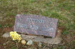 Arlie Wayne Hammons
