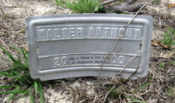 Walter Anthony