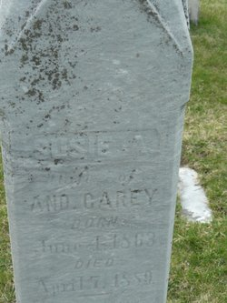 Susie Carey