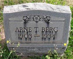 Arne T Berg