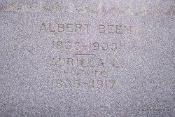 Albert Beem
