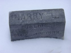 Harry L Baldie