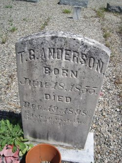 T. G. Anderson
