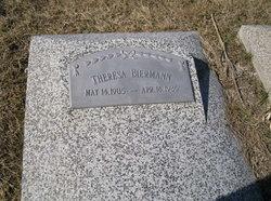 Theresa Catherine <i>Ternus</i> Biermann