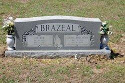 Louise <i>Brecheen</i> Brazeal