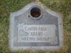 CanDee Angel Adams