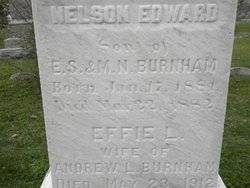 Nelson Edward Burnham