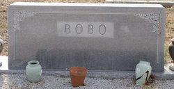 Sanford Ray Bobo