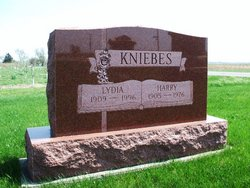 Harry Kniebes